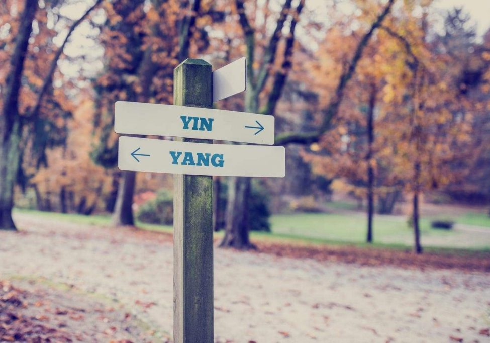 Signpost in a park or forested area with arrows pointing two opposite directions towards Yin and Yang.